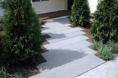 bluestone tread walkway...would look better if spaces apart a few inches