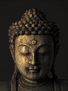 The 8 Stages of Meditation described in Anapanasati, a Buddhist scripture is presented. Gautama Buddha, Buddha Buddhism, Buddhist Art, Buddha Drawing, Buddha Painting, Buddha Wall Art, Buddha Decor, Buddha Face, Buddha Zen