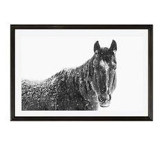 "Snowy Black Horse by Jennifer Meyers, 28 x 42"", Ridged Distressed, Black, Mat"