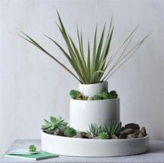 Great ideas for small gardens indoor and outdoor. 3 bowls, different sizes, stacked & filled with rocks, sand, plants, etc....
