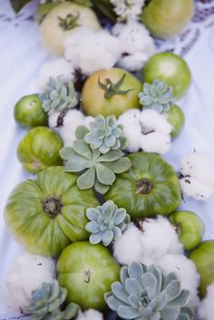 Love this tabletop decor. Succulents, cotton, and green tomatoes! JL DESIGNS