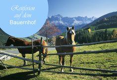 Reitferien im Südtirol mit der Familie  Wir verraten euch unseren soeben entdeckten Geheimtipp für Ferien auf einem Bauernhof im Südtirol, inklusive Reitstall.