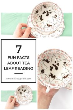 7 Fun Facts About Tea Leaf Reading - - What do you see inside your teacup? Tea leaf reading is the art and practice of divination using loose leaf tea leaves and a teacup. Reading Tea Leaves, Tea Reading, Palm Reading, Tarot, Witch Decor, Witch Craft, Fortune Telling, Practical Magic, How To Make Tea