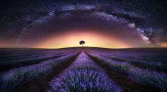 Photograph Lavender Field & Milky Way I by Jesús M. García © on 500px