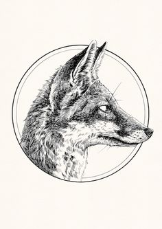 Printed using high quality archival pigment ink and matte archival paper. Inks and paper are manufactured to be used together creating bright, clear and long last prints. Coyote Drawing, Fox Drawing, Animal Sketches, Animal Drawings, Illustration Sketches, Art Sketches, Lechuza Tattoo, Coyote Tattoo, Tattoo Drawings