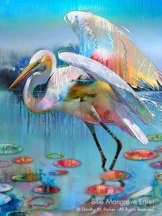 Abstract Animal Art, Tropical Bird Art, Artist Tim Parker — Gallery Naples FL - Contemporary Fine Art Prints & Modern Abstract Artwork by Southwest FL Artist Timothy Parker Tropical Art, Tropical Birds, Modern Tropical, Modern Art, Contemporary Art, Watercolor Bird, Painting Edges, Artist Painting, China Painting