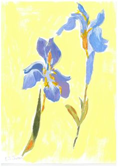 Title: Pair of Iris painting Artist / Scheme: Eileen Jones / Blackham House Medium: Acrylic