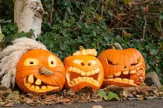 Three halloween pumkins with creepy faces. Free art print of Three Halloween Pumpkins. Easy Pumpkin Carving, Halloween Pumpkin Carving Stencils, Halloween Pumpkin Designs, Halloween School Treats, Halloween Treat Bags, Pumpkin Art, Scary Pumpkin, Pumpkin Crafts, Scary Halloween