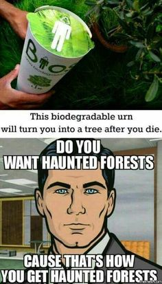 Archer on Haunted forests...