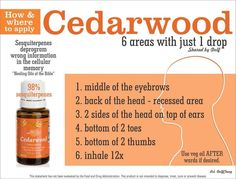 Where to use cederwood oil sign up: https://www.youngliving.com/signup/?sponsorid=2239735&enrollerid=2239735  #YL