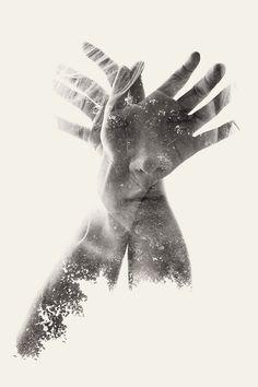 "Christoffer Relander presenta ""We are Nature"" « Designals"