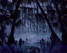 Swamp at Night   swamp-night