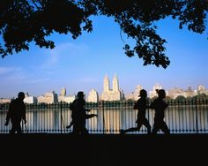 40 Free Things To Do In NYC...