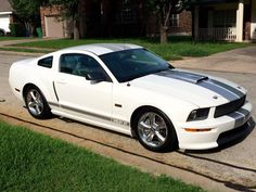 2007 Shelby GT Mustang