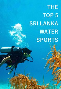 Water sports in Sri Lanka are for everyone who looks forward to treating your adrenaline junkiesThe beautiful coast stretch around Sri Lanka and the untamed rivers are perfect playgrounds for extremely adventurous water sports throughout the year!.Here are the top 5 thrilling water sports you must enjoy in Sri Lanka.