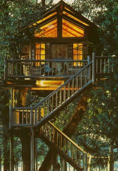 treehouse for adults | Adult Treehouse by loracia Please visit our website @ https://www.freecycleusa.com for awesome stuff.