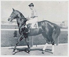 Kentucky and Louisiana Derby winner Black Gold and Jaydee Mooney. Buried in the Fairground's infield