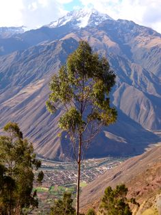 A view of the Sacred Valley of the Incas, in the Andes of Peru.  It's also called the Urubamba Valley.