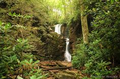 Here are some other hikes in Western North Carolina and Watauga County. It has been said watauga means - beautiful waters or whispering waters.  I believe it!  appalachiantreks.blogspot.com