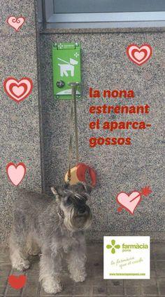 Nuevo aparca-perros en Farmacia Pons. Mayo 2015