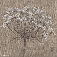 Fleur de Cotton