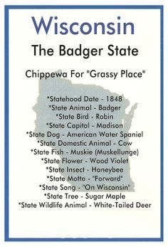 Symbols from the state of Wisconsin. Professionally printed in the USA. Wisconsin Facts, Hudson Wisconsin, Milwaukee Wisconsin, Wisconsin Badgers, Beloit Wisconsin, Brookfield Wisconsin, State Mottos, Thinking Day, Love Words
