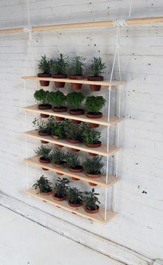 Modernos estantes de plantas DIY hechos en casa;  Gardenista