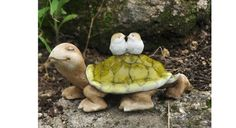 This tortoise is giving his birdy friends a place to rest and a ride….a very slow ride.
