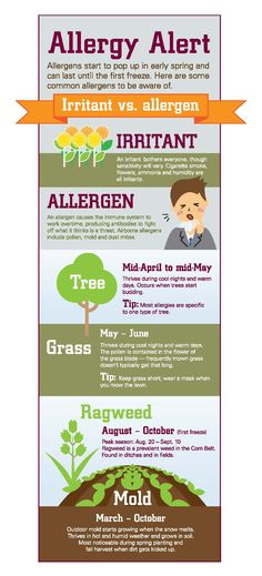 This time of year, you might find yourself closing the windows to keep the pollen out rather than opening them to let the fresh air in. Cold Or Allergies, The Fresh, Health And Wellness, Infographic, Finding Yourself, Therapy, Windows, Let It Be, Infographics