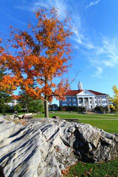 66 Best James Madison University images