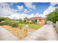 1060 Calimo Street, North Albury, NSW 2640 - Real estate for sale - homesales.com.au Brisbane, Melbourne, Natural Wonders, Property For Sale, Country Roads, Real Estate, Australia, Mansions