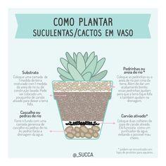 New succulent garden indoor tips 63 Ideas Succulent Gardening, Cacti And Succulents, Planting Succulents, Cactus Plants, Container Gardening, Gardening Tips, Planting Flowers, Eco Garden, Cactus Flower
