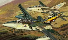 Panavia Tornado F Mk 3, 111 Sqn. 90th Anniversary (Masao Satake)