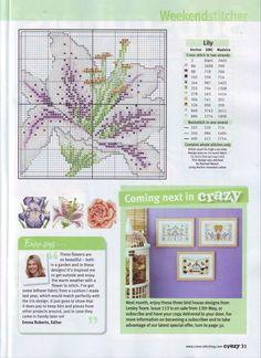 Gallery.ru / Фото #15 - Cross Stitch Crazy 112 июнь 2008 + приложение Best ever pet - tymannost