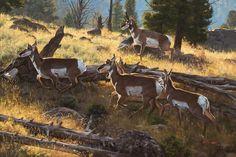 Dustin Van Wechel: Narratives in Nature - Exhibitions - Trailside Galleries Hunting Art, Outdoor Art, Nature Scenes, Wildlife Art, Nature Animals, Western Art, Art Auction, Pretty Pictures, Impressionist