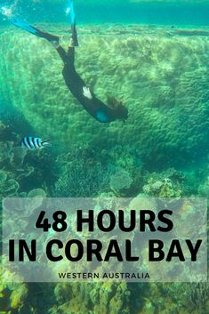 Visiting Coral Bay, but short on time? This post shares awesome things to do in Coral Bay if you only have 48 hours! Manta rays, snorkeling and amazing food? Australia Travel Guide, Australia Tours, Western Australia, Romantic Camping, Romantic Travel, Perth, New Zealand Travel, Wanderlust Travel, Solo Travel