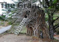 www.TheMohicans.Net  To see more tree houses