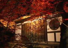 Eikan-do Temple which is dyed autumn colors ( Kyoto ,Japan ) Author: Hitomi Zama.