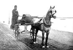 Old Irish jaunting car. Old Pictures, Old Photos, Vintage Photos, Connemara Pony, Old Irish, Irish People, Dublin City, Horse Drawn, Sidecar