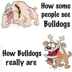 Bahahaha! So true!!