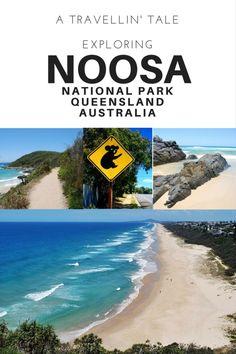 Exploring Noosa National Park on Australia's Sunshine Coast Noosa Australia, Visit Australia, Australia Travel, Scuba Diving Australia, Boat Hire, Fishing Charters, Victoria Australia, Great Barrier Reef, Sunshine Coast