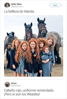 Harry James Potter, Harry Potter Tumblr, Harry Potter Hermione, Memes Do Harry Potter, Harry Ptter, Harry Potter Universal, Draco Malfoy, Red Head Kids, Must Be A Weasley