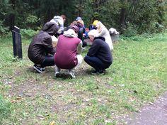 Trangian käyttö tuli tutuksi lettujen paiston yhteydessä Lanu-puistossa.