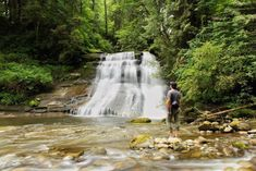 If you like hiking and soaking up the great outdoors—congrats, you live in the right place. Kanaka Creek Falls is a lesser-known spot you have to visit. Seasons Of The Year, Picnic Area, Round Trip, Canada Travel, The Great Outdoors, The Best, Lush, Greenery, Things To Do