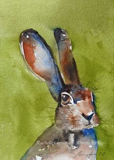 Rabbit Watercolor by Rachelle Levingston