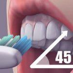 Jak na ustupující dásně? Zkuste tyto domácí metody | Rehabilitace.info Smoothie, Health, Fitness, Top, Teeth, Health Care, Smoothies, Crop Shirt, Shirts
