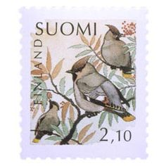 Birds on stamps: Finland Finlande Finlandia Postage Stamp Design, Postage Stamps, Bird Illustration, Flora, Birds, Gallery, Painting, Image, South America
