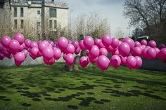 Balloons floating above grass: use golf tees to stake down balloons for this fun bday surprise!
