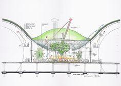 California Academy of Sciences | Credit: Renzo Piano Building Workshop
