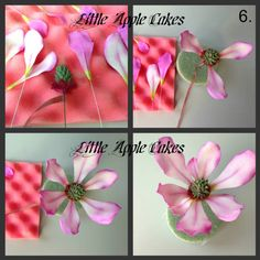 Magnolia Flower Tutorial - CakesDecor